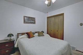 Photo 22: 1839 38 Street SE in Calgary: Forest Lawn Detached for sale : MLS®# A1120040