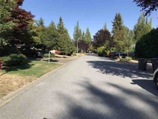 """Photo 20: 16118 12A Avenue in Surrey: King George Corridor House for sale in """"South Meridian"""" (South Surrey White Rock)  : MLS®# R2397694"""