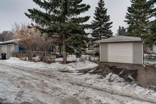 Photo 27: 2543 11 Avenue NW in Calgary: St Andrews Heights Detached for sale : MLS®# A1066144