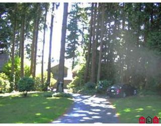 Photo 7: 12636 STATION PL in Surrey: House for sale (Panorama Ridge)  : MLS®# F2616401