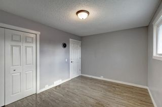 Photo 19: 4604 Maryvale Drive NE in Calgary: Marlborough Detached for sale : MLS®# A1090414