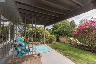 Photo 16: 4304 Houlihan Pl in VICTORIA: SE Gordon Head House for sale (Saanich East)  : MLS®# 812176