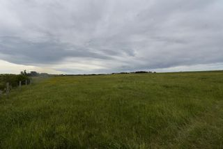 Photo 12: 320232 Range Road 23: Rural Mountain View County Land for sale : MLS®# A1015216