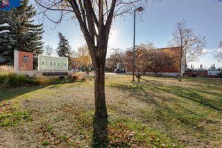 Photo 21: 402 8525 91 Street in Edmonton: Zone 18 Condo for sale : MLS®# E4266193