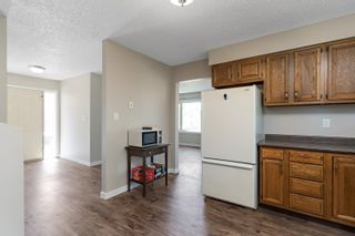 Photo 17: 55 Discovery Avenue: Cardiff House for sale : MLS®# E4261648