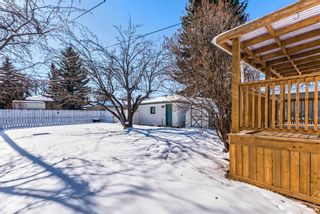 Photo 27: 447 36 Avenue NW in Calgary: Highland Park Detached for sale : MLS®# A1070695