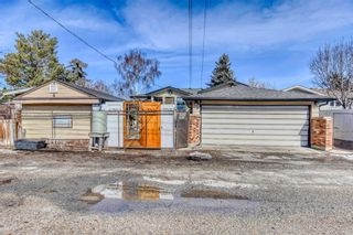 Photo 10: 2115 Mackid Crescent NE in Calgary: Mayland Heights Detached for sale : MLS®# A1080509