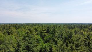 Photo 11: Lot Highway 203 in Shelburne: 407-Shelburne County Vacant Land for sale (South Shore)  : MLS®# 202114248