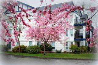 "Photo 20: 111 4955 RIVER Road in Delta: Neilsen Grove Condo for sale in ""Shorewalk"" (Ladner)  : MLS®# R2150658"