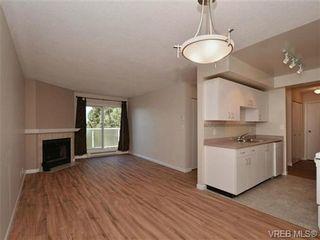 Photo 5: 404 2520 Wark St in VICTORIA: Vi Hillside Condo for sale (Victoria)  : MLS®# 692859