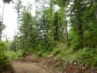 Photo 11: SL 14 950 Heriot Bay Rd in QUADRA ISLAND: Isl Quadra Island Land for sale (Islands)  : MLS®# 841835