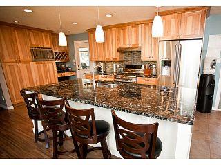 Photo 2: 909 BEGBIE Crescent in Williams Lake: Esler/Dog Creek House for sale (Williams Lake (Zone 27))  : MLS®# N240826