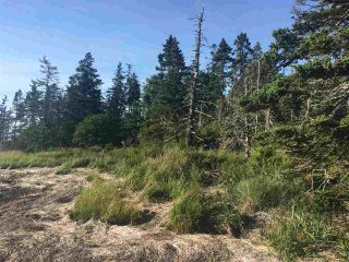 Photo 15: Lot Highway 3 in East Green Harbour: 407-Shelburne County Vacant Land for sale (South Shore)  : MLS®# 202101579