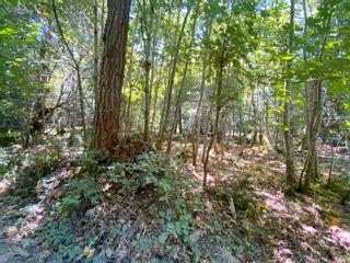 Photo 7: 140 SUNNYSIDE Lane: Galiano Island Land for sale (Islands-Van. & Gulf)  : MLS®# R2609598