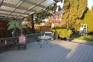 Photo 8: 23775 119B Avenue in Maple Ridge: Cottonwood MR House for sale : MLS®# R2541212