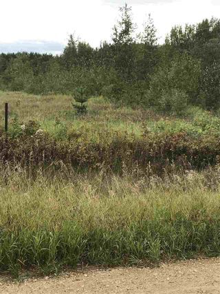 Photo 3: 234 TWP RD 602: Rural Westlock County Rural Land/Vacant Lot for sale : MLS®# E4231847