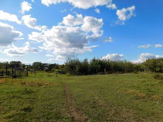 Photo 6: Rge Rd 231 North of Twp Rd 564: Rural Sturgeon County Rural Land/Vacant Lot for sale : MLS®# E4262842