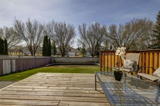 Photo 33: 208 Mt Selkirk Close SE in Calgary: McKenzie Lake Detached for sale : MLS®# A1104608