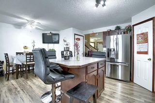 Photo 13: 47 Appleburn Close SE in Calgary: Applewood Park Detached for sale : MLS®# A1049300