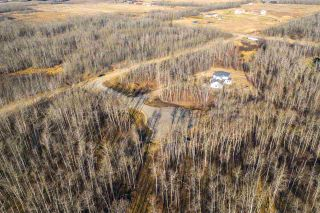 Photo 8: 40 50367 RR 222: Rural Leduc County Rural Land/Vacant Lot for sale : MLS®# E4220000