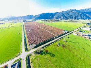Photo 10: 4081 DIXON Road: Agri-Business for sale in Abbotsford: MLS®# C8035569