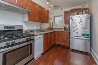 Photo 15: 1246 Montrose Ave in Victoria: Vi Hillside Multi Family for sale : MLS®# 879751