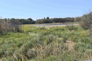Main Photo: RR 222 Twp 504 Lot 5: Rural Leduc County Rural Land/Vacant Lot for sale : MLS®# E4225855