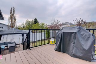 Photo 39: 22 WESTMEWS Drive: Fort Saskatchewan House for sale : MLS®# E4245512