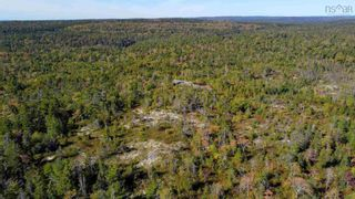 Photo 3: 2014 Myra Road in Porters Lake: 31-Lawrencetown, Lake Echo, Porters Lake Vacant Land for sale (Halifax-Dartmouth)  : MLS®# 202125407