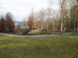 "Photo 20: 319 12635 190A Street in Pitt Meadows: Mid Meadows Condo for sale in ""CEDAR DOWNS"" : MLS®# R2362531"