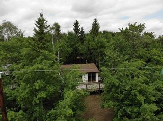 Photo 9: 14 Lakeview Drive: Hardisty House for sale : MLS®# E4250111