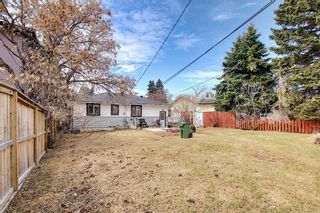 Photo 25: 4328 70 Street NW in Calgary: Bowness Detached for sale : MLS®# A1093003