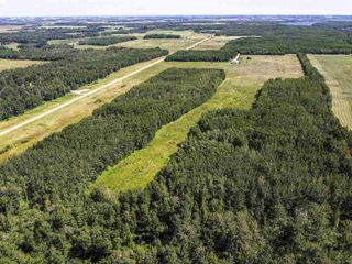 Photo 7: RR 274 TWP 481: Rural Leduc County Rural Land/Vacant Lot for sale : MLS®# E4224890