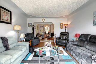 Photo 15: 1223 Richland Road NE in Calgary: Renfrew Detached for sale : MLS®# A1153557