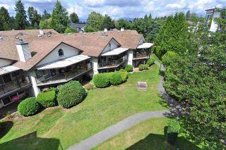 Photo 8: 404 13876 102 AVENUE in Surrey: Whalley Condo for sale (North Surrey)  : MLS®# R2396892