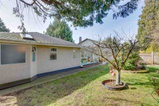 """Photo 31: 13527 14 Avenue in Surrey: Crescent Bch Ocean Pk. House for sale in """"Marine Terrace"""" (South Surrey White Rock)  : MLS®# R2552235"""