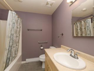 Photo 27: 3204 Frechette St in : SE Mt Tolmie House for sale (Saanich East)  : MLS®# 867293