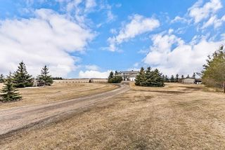 Photo 4: 253185 RGE RD 275 in Rural Rocky View County: Rural Rocky View MD Detached for sale : MLS®# C4236387