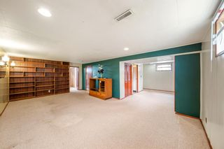Photo 18: 3320 Dover Ridge Drive SE in Calgary: Dover Detached for sale : MLS®# A1141061