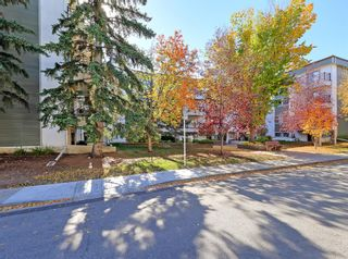 Photo 26: 201 723 57 Avenue SW in Calgary: Windsor Park Apartment for sale : MLS®# A1153229
