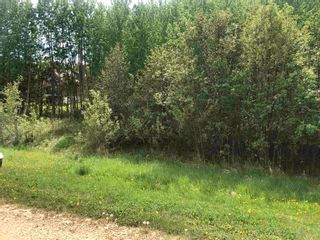 Photo 4: 11 Crystal Keys: Rural Wetaskiwin County Rural Land/Vacant Lot for sale : MLS®# E4247527