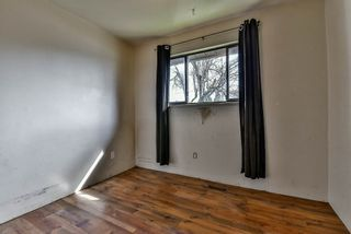 Photo 13: 12521 92 Avenue in Surrey: Queen Mary Park Surrey House for sale : MLS®# R2151336