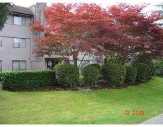 Photo 1: 311 520 COTTONWOOD Avenue in Coquitlam: Coquitlam West Condo for sale : MLS®# V673428