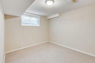 Photo 34: 137 Saddletree Close NE in Calgary: Saddle Ridge Detached for sale : MLS®# A1091689