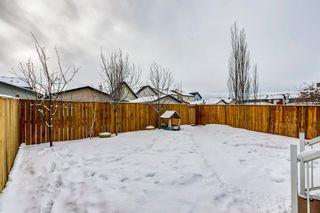 Photo 47: 69 SILVERADO Boulevard SW in Calgary: Silverado Detached for sale : MLS®# A1072031