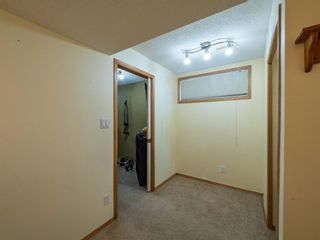 Photo 27: 139 Springs Crescent SE: Airdrie Detached for sale : MLS®# A1065825