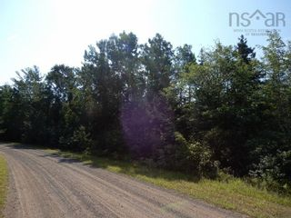 Photo 6: Watt Road in Hedgeville: 108-Rural Pictou County Vacant Land for sale (Northern Region)  : MLS®# 202122216
