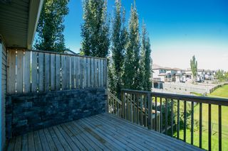 Photo 27: 20032 46 Avenue NW in Edmonton: Zone 58 House for sale : MLS®# E4262791