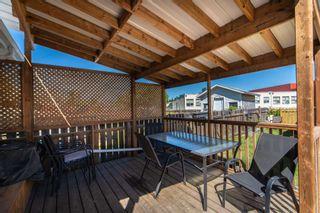 Photo 31: 6 WILSON Drive: Devon House for sale : MLS®# E4251063