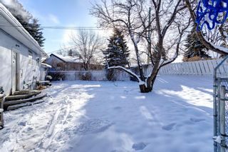 Photo 31: 119 Thorncrest Road NW in Calgary: Thorncliffe Detached for sale : MLS®# A1067750